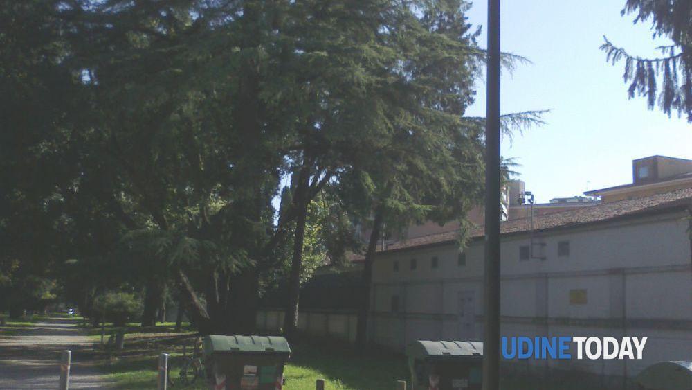 Ufficio Verde Pubblico Udine : Udine nuovi punti luce a led nel parco della rimembranza
